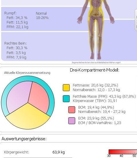 Ergebnis BIA-Messung (4)